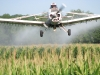 ag-corn-spraying