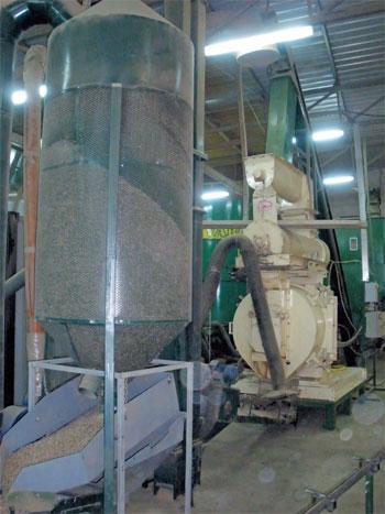 proizvodnja briketa