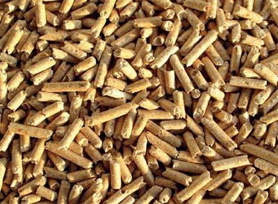 proizvodnja biogoriva