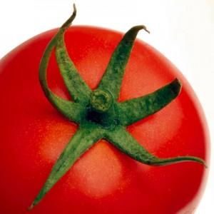 folijarna-prehrana
